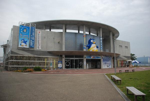 長崎ペンギン水族館 (1)