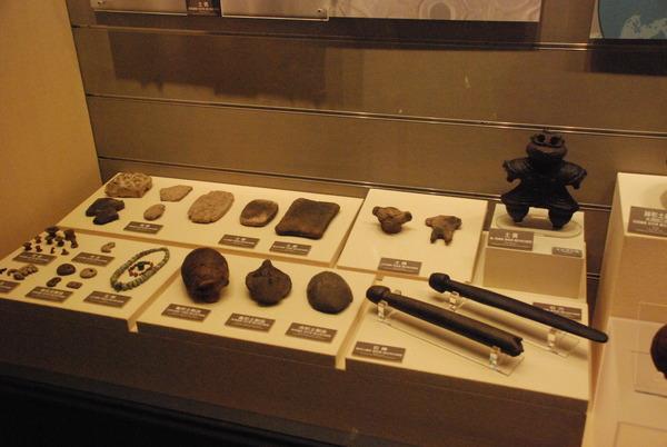 明治大学博物館 (8)