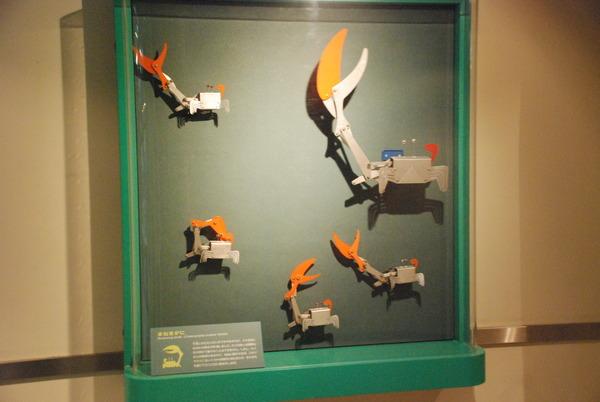 東海大海洋生物博物館 (21)
