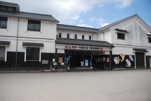 日本一の魚の剥製水族館 (1)