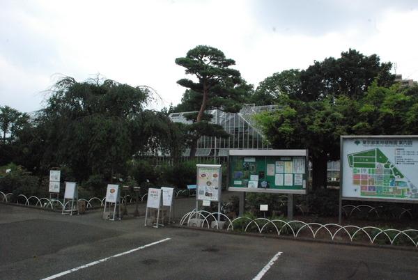 東京都薬用植物園 (1)