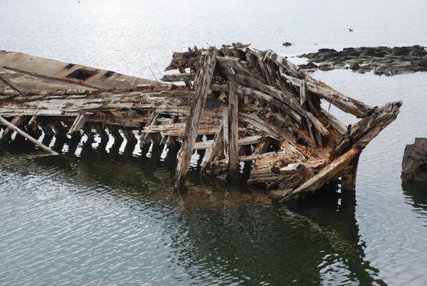 大根島の廃船 (3)