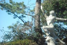 雲見彫刻ライン (16)