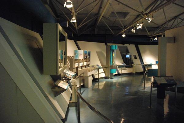東海大海洋生物博物館 (5)