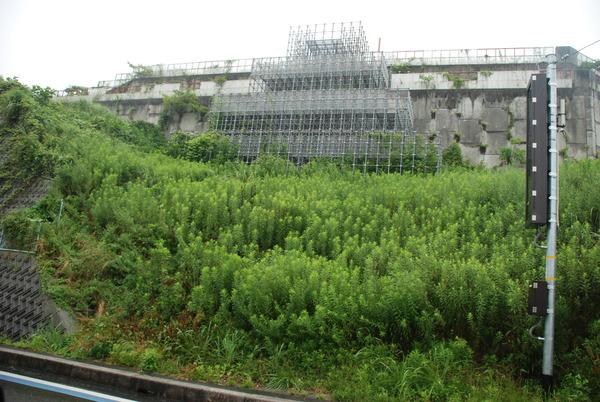 日本一のジャングルジム (6)