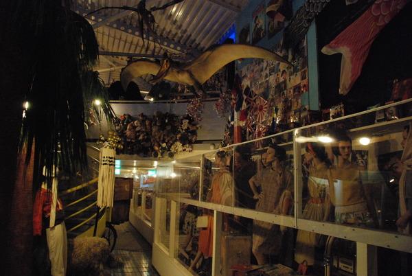 怪しい少年少女博物館 (6)