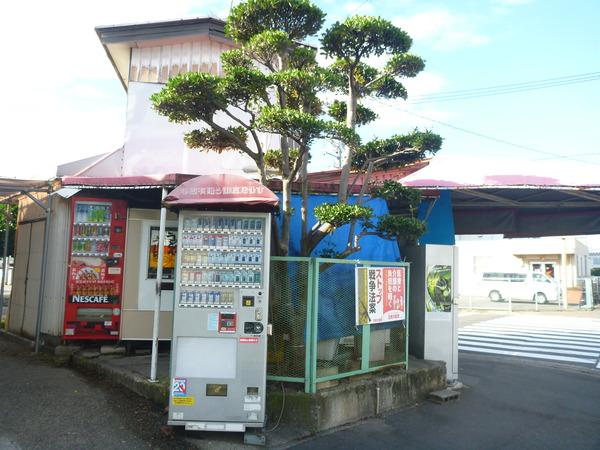 五洋売店 (1)