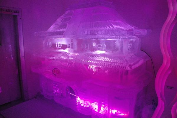 氷の水族館 (22)