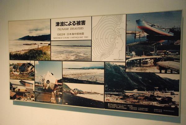 東海大海洋生物博物館 (8)