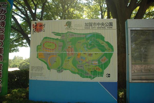 加賀市中央公園 (1)