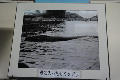 雲見くじら館 (21)
