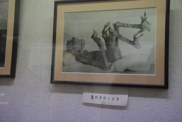 桃太郎神社 (39)