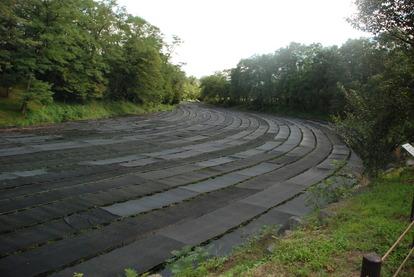 大王わさび農場 (6)