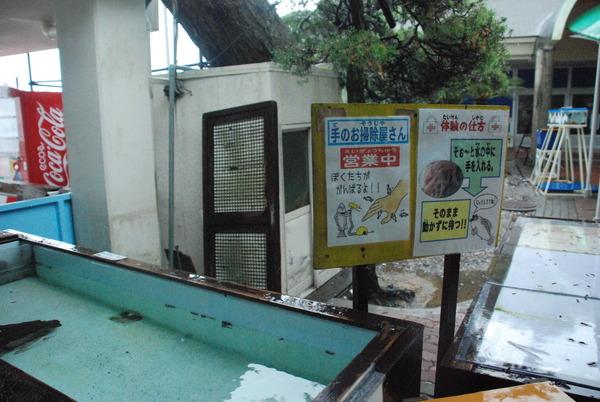 桂浜水族館 (3)