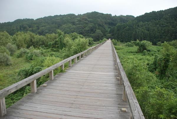 蓬莱橋 (15)