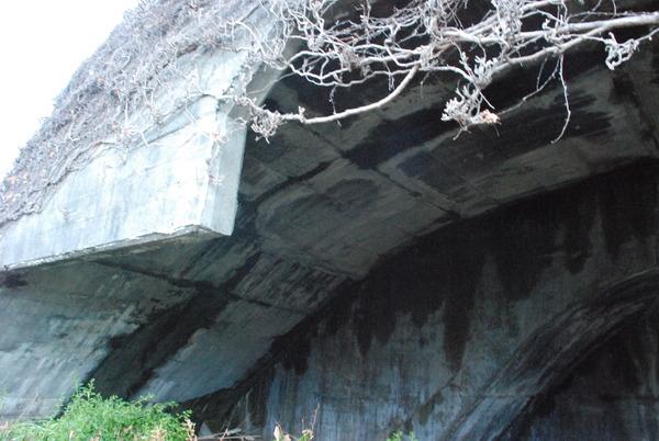 高知堰体壕 (4)