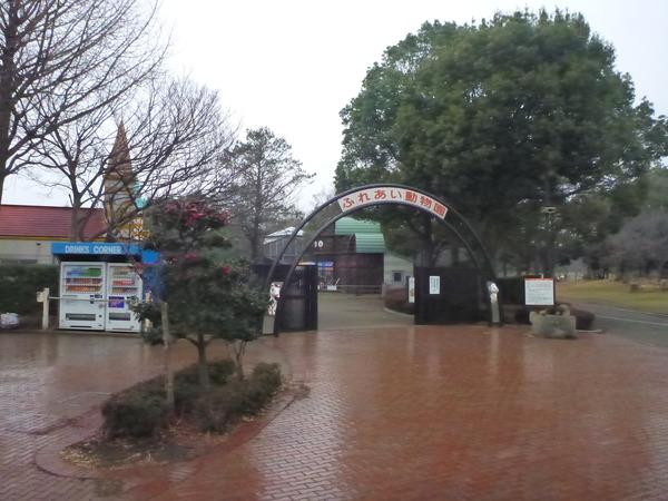 平塚市ふれあい動物園 (1)