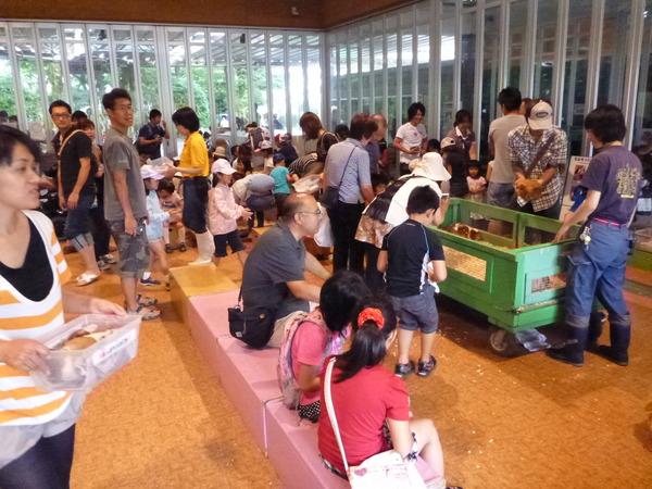 羽村動物園 (58)