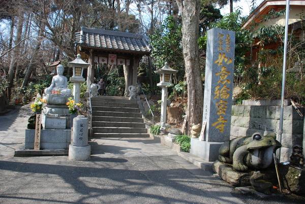 かえる寺 (14)