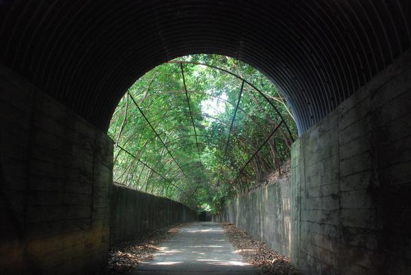 開聞トンネル (9)