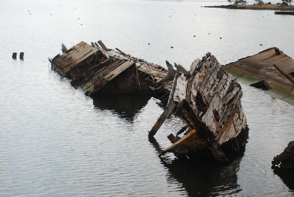 大根島の廃船 (5)