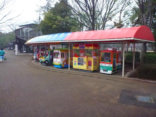 平塚市ふれあい動物園 (6)