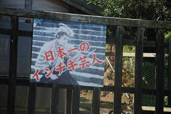 元祖忍者村 嬉野温泉 肥前夢街道 (3)