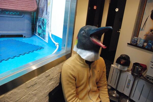 ペンギンのいるBAR (17)