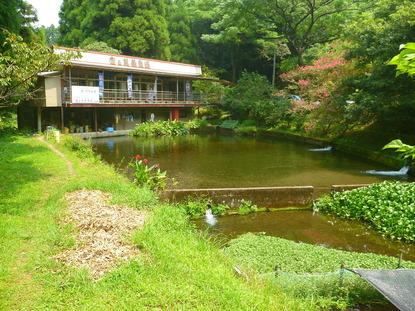 堂ヶ尾養魚場 (12)
