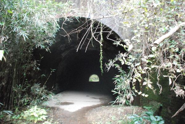 畑トンネル (9)