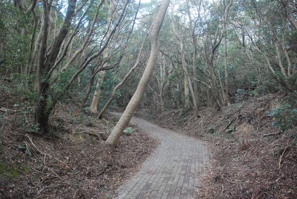 加太砲台跡 (3)