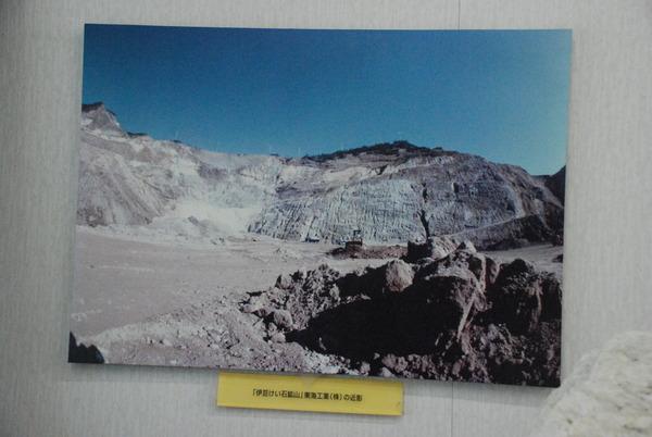 黄金崎クリスタルパーク (10)