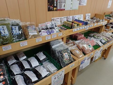 JA伊豆太陽 竹麻支店 (6)