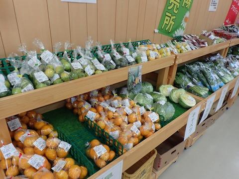 JA伊豆太陽 竹麻支店 (4)
