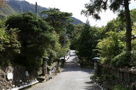1710 箱根 竹やぶ 導入路