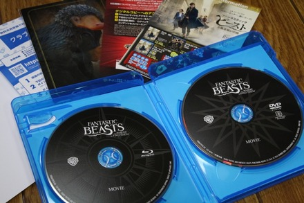 Blu-ray ファンタスティック・ビーストと魔法使いの旅 02