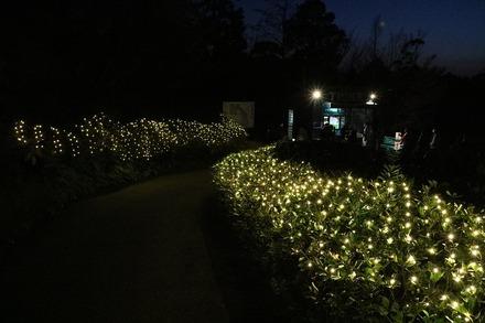 2012 愛媛高知 北川村 モネの庭 マルモッタン 16