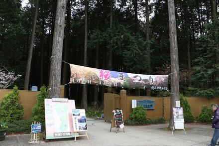 1904 静岡 御殿場 秩父宮記念公園 01