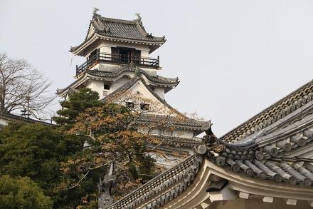 2012 愛媛高知 高知城 02
