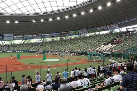 180603 vs阪神 座席からの眺め
