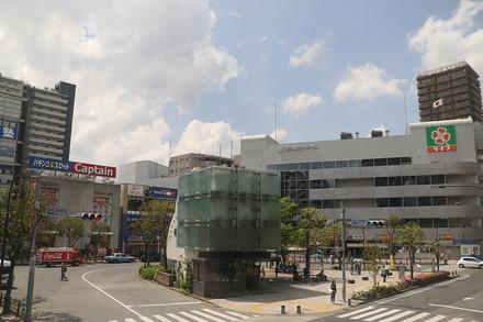篠崎 オーガニックカフェ・ラムノ カウンターからの眺め
