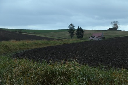 1810 旭川 赤い屋根のある丘