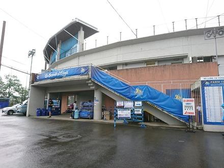 190622 横須賀スタジアム vsDeNA 雨天中止02