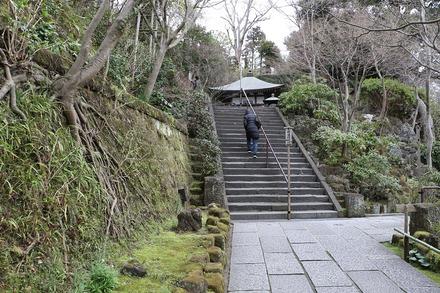 2003 鎌倉 長谷寺  03