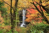 四季折々の美しさ大湯滝めぐり