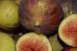 figs-1604064__180_いちじく