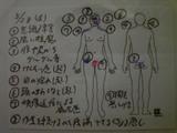 26cdb230.jpg
