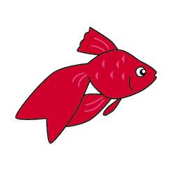 fish010