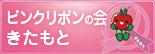 bannar_pink_mini