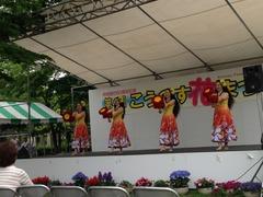 花祭り2014
